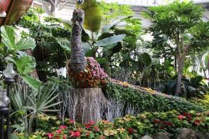 The Allan Gardens