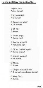 translation errors-
