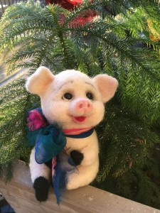 year of pig (3)